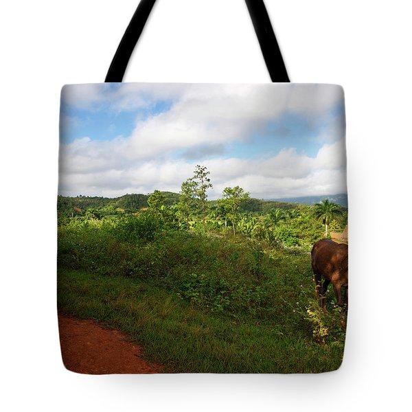Vinales Valley II Tote Bag