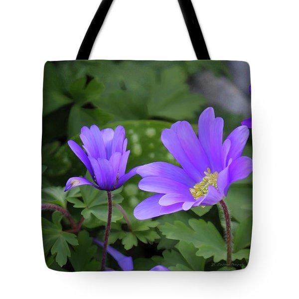 Vinca In The Morning Tote Bag