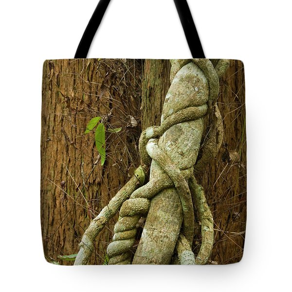 Tote Bag featuring the photograph Vine by Werner Padarin