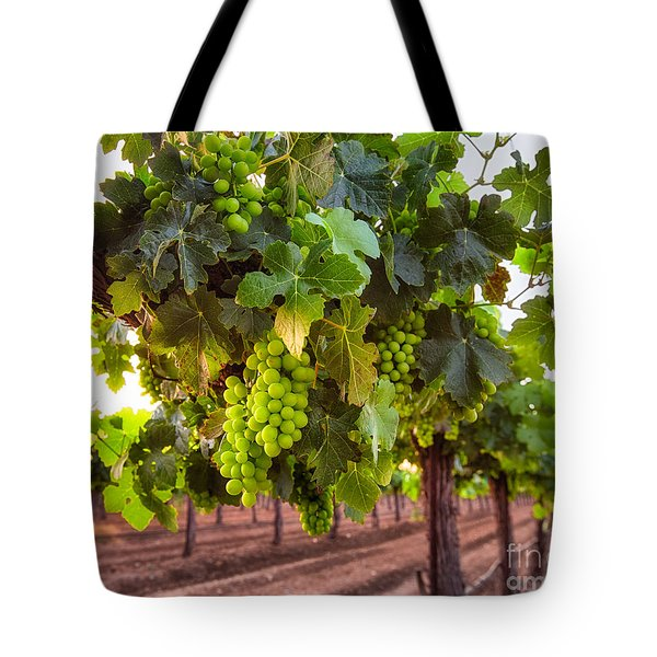 Vineyard 3 Tote Bag