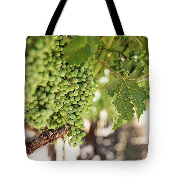 Wine Vineyard Of St. Helena - Grapevine Napa Valley Photography Tote Bag
