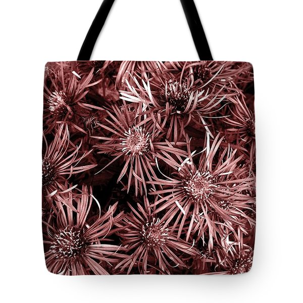 Vintage Asters Tote Bag by Danielle R T Haney