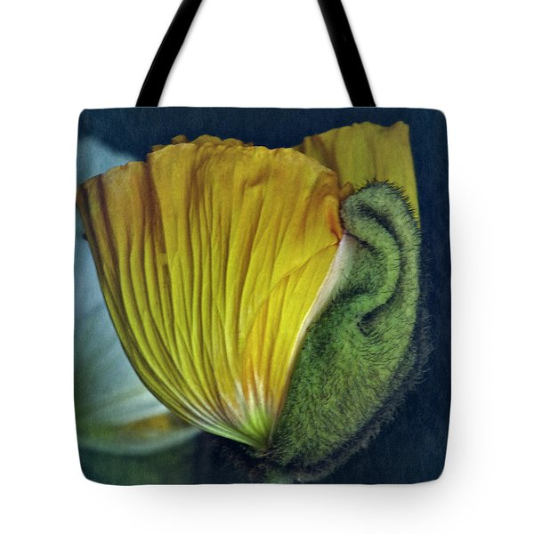 Tote Bag featuring the photograph Vintage Poppy 2017 No. 1 by Richard Cummings