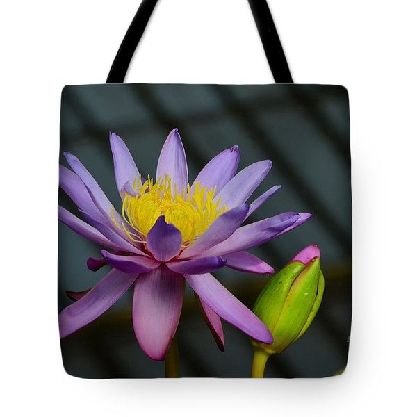 Violet And Yellow Water Lily Flower With Unopened Bud Tote Bag
