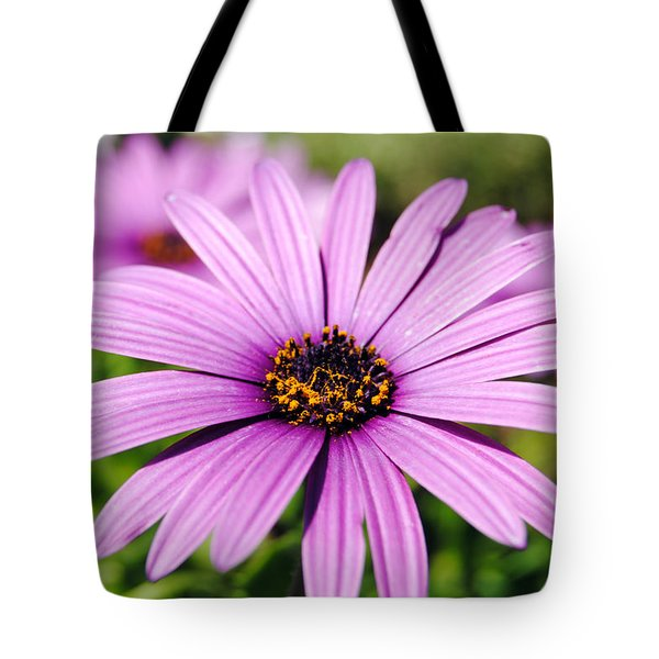 The African Daisy 1 Tote Bag