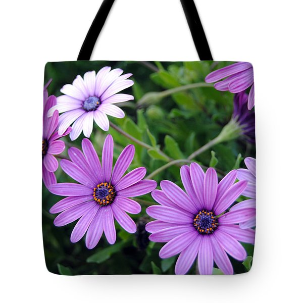The African Daisy Flowers Tote Bag
