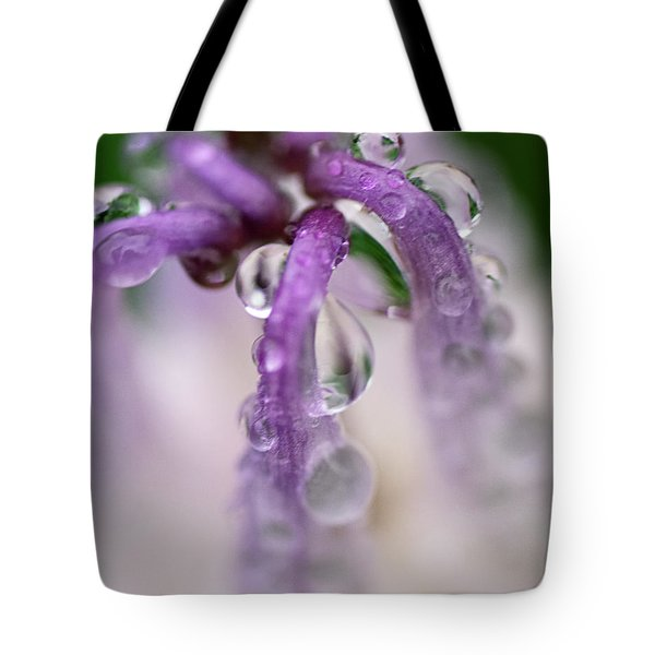 Tote Bag featuring the photograph Violet Mist by Susan Capuano