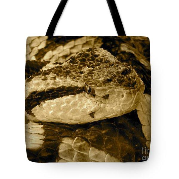 Viper's Glare Tote Bag