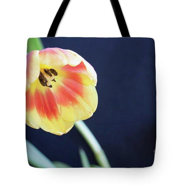 Virgin Beauty Tote Bag