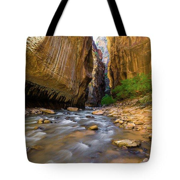 Virgin River - Zion National Park Tote Bag