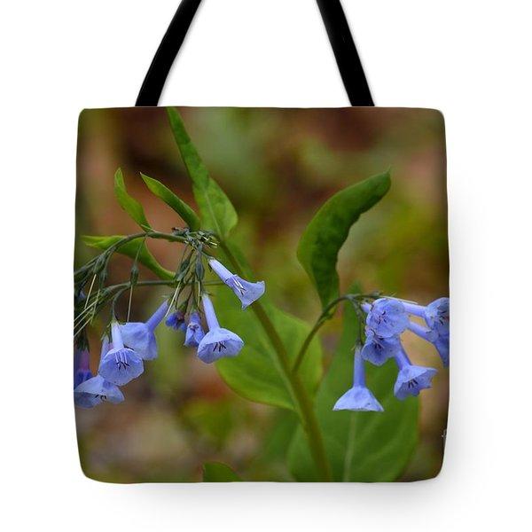 Virginia Bluebells Tote Bag by Randy Bodkins
