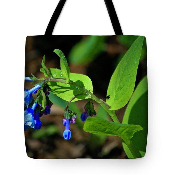 Virginia Bluebells Tote Bag by Teresa Mucha