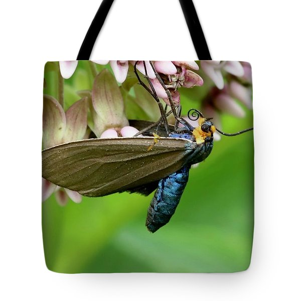 Virginia Ctenucha Moth Tote Bag