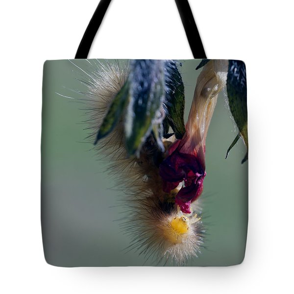 Virginia Tiger Moth 3 Tote Bag