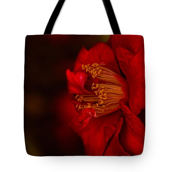 Virtuoso  Tote Bag by John Harding