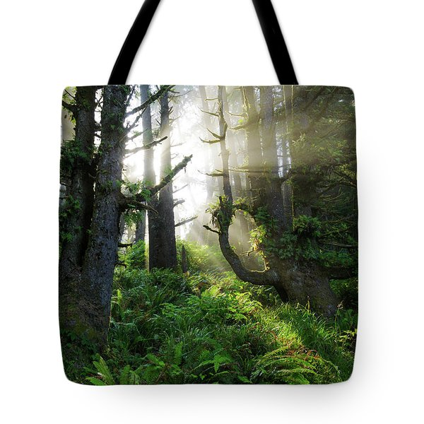 Tote Bag featuring the photograph Vision by Chad Dutson