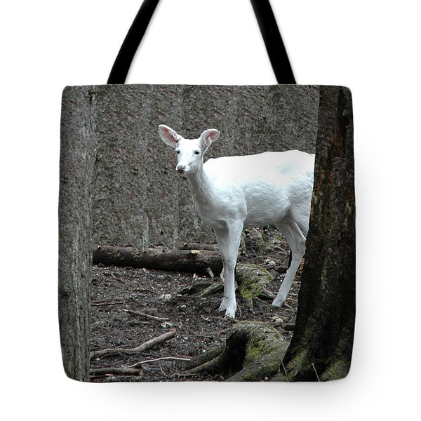 Tote Bag featuring the photograph Vision Quest White Deer by LeeAnn McLaneGoetz McLaneGoetzStudioLLCcom
