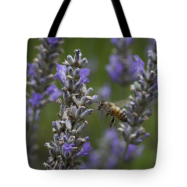 Visitor Tote Bag