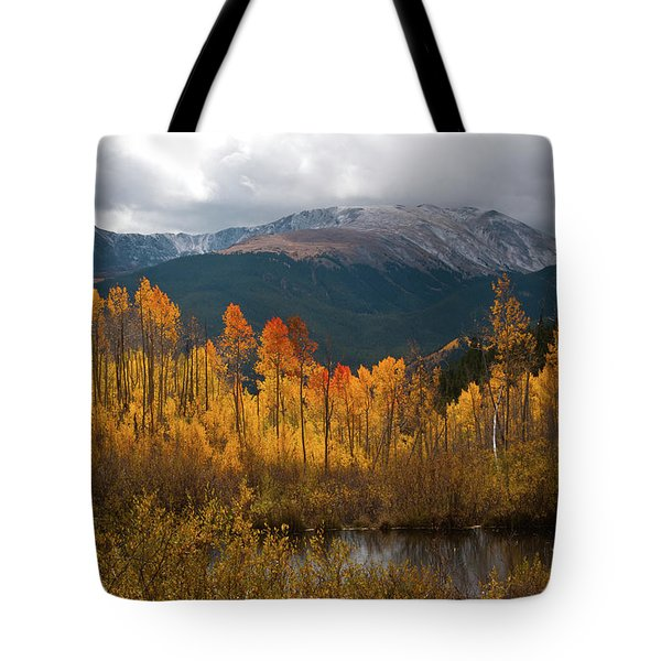 Vivid Autumn Aspen And Mountain Landscape Tote Bag