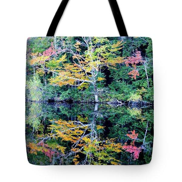 Vivid Fall Reflection Tote Bag