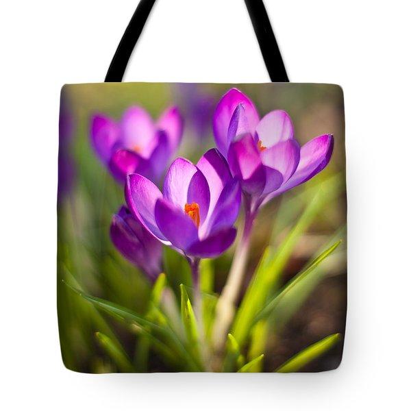 Vivid Petals Tote Bag by Mike Reid