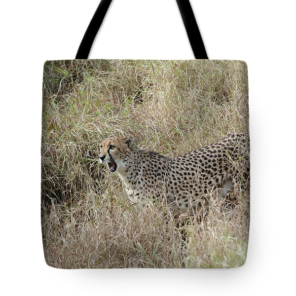 Tote Bag featuring the photograph Vocalizing by Fraida Gutovich