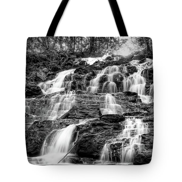 Vogel State Park Waterfall Tote Bag