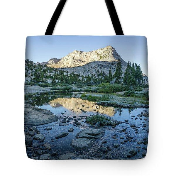 Vogelsang Tote Bag