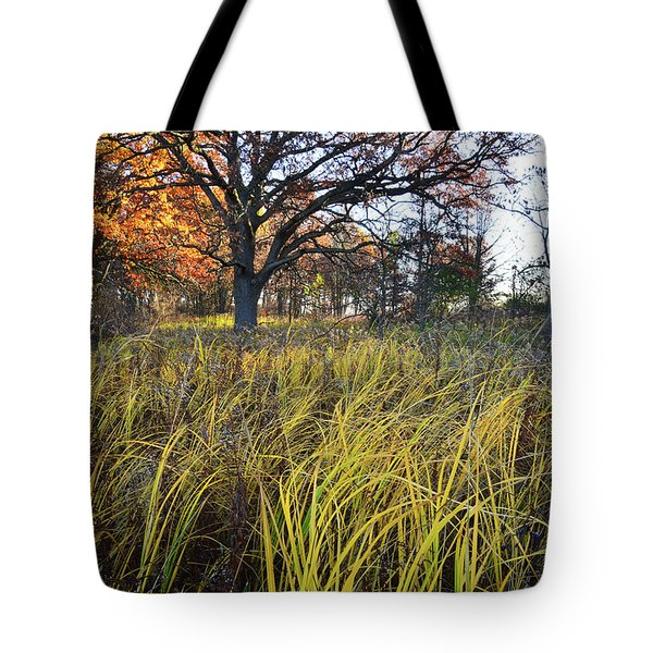 Tote Bag featuring the photograph Volo Bog Fall Morning by Ray Mathis