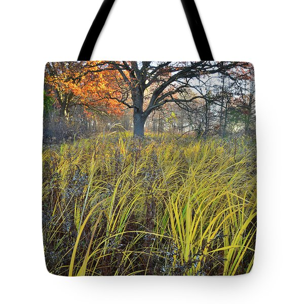 Tote Bag featuring the photograph Volo Bog Natural Area by Ray Mathis