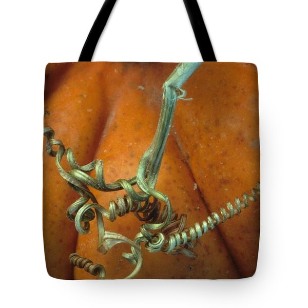 Voluptuous Autumn Tote Bag by Laurie Paci