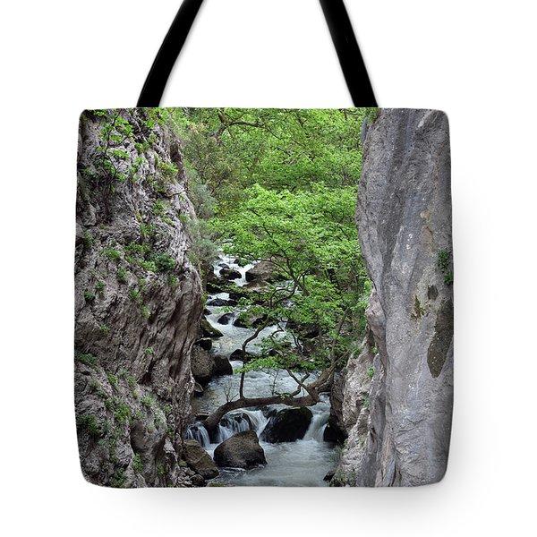 Vouraikos Gorge Tote Bag