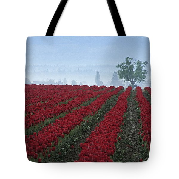 Wa Red Tulips Tote Bag