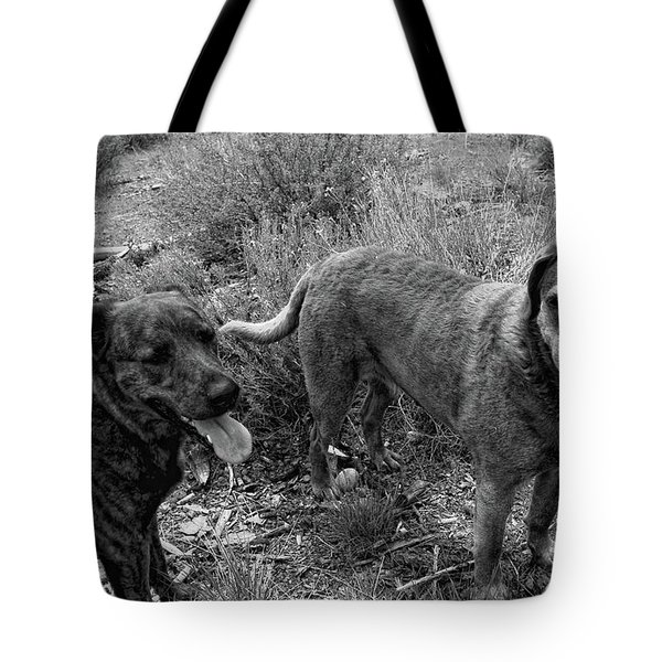 Wagging Tongues Tote Bag by Donna Blackhall