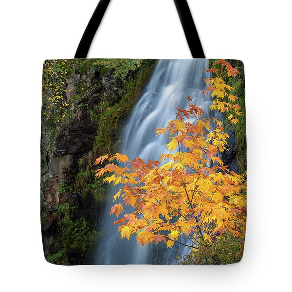 Wah Gwin Gwin Falls In Autumn Tote Bag by David Gn