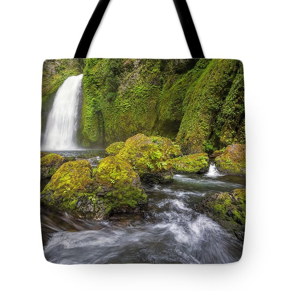 Wahclella Falls Tote Bag by David Gn