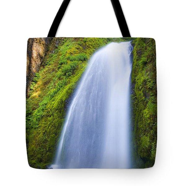 Wahkeena Tote Bag by Mike  Dawson