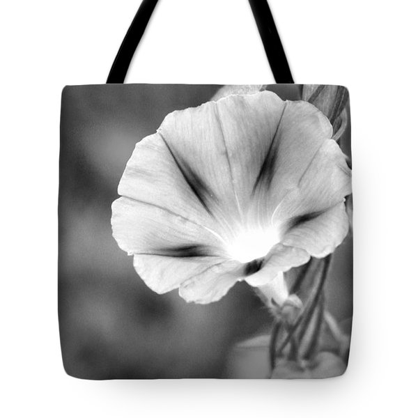 Tote Bag featuring the photograph Wait For The Sun To Rise In The Morning by Vadim Levin
