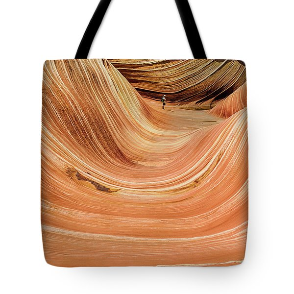 Waiting At The Wave Tote Bag