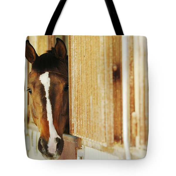 Waiting For A Ride Tote Bag by Jill Reger