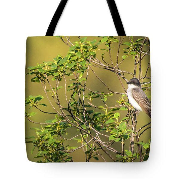 Waiting For A Victim Tote Bag by Onyonet  Photo Studios