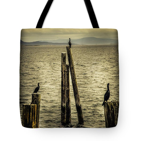Waiting For Dinner Tote Bag