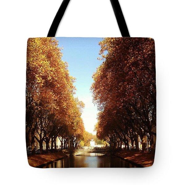 Autumn Sunny Days Tote Bag
