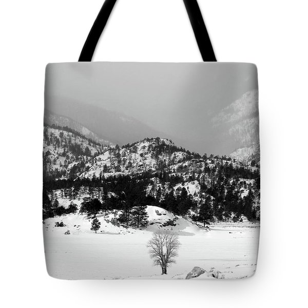 Tote Bag featuring the photograph Waiting For Spring by Silke Brubaker