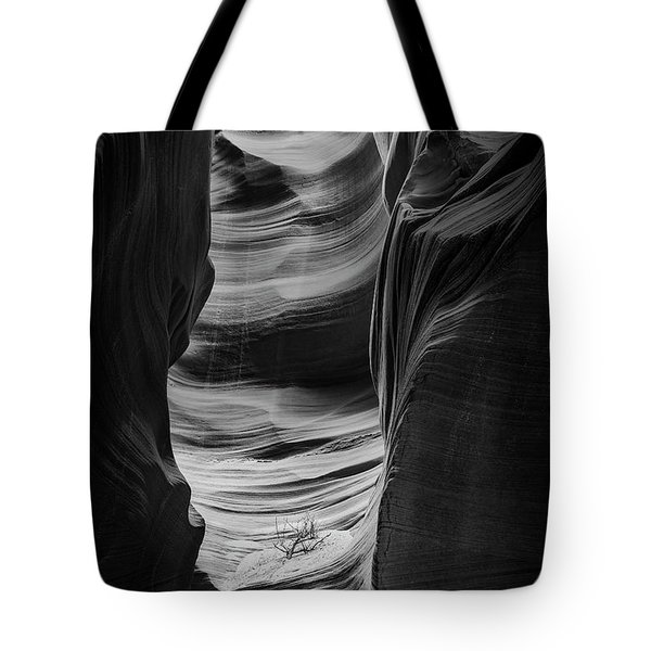 Waiting For Sunlight Tote Bag