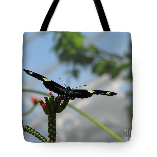Waiting For Take Off Tote Bag