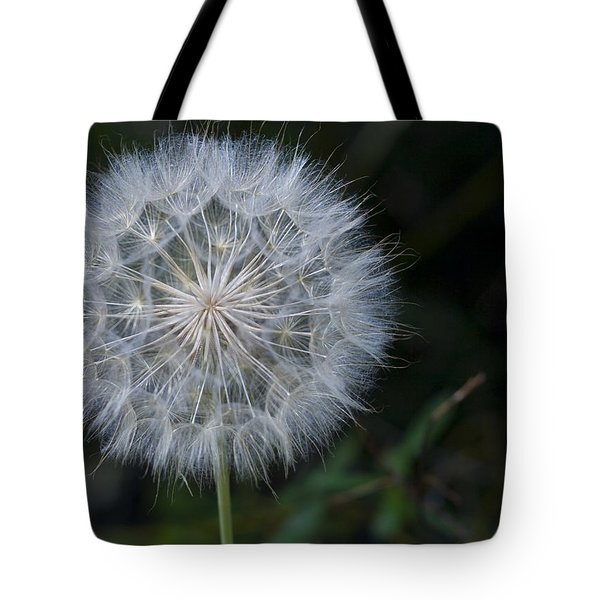Waiting For The Breeze Tote Bag