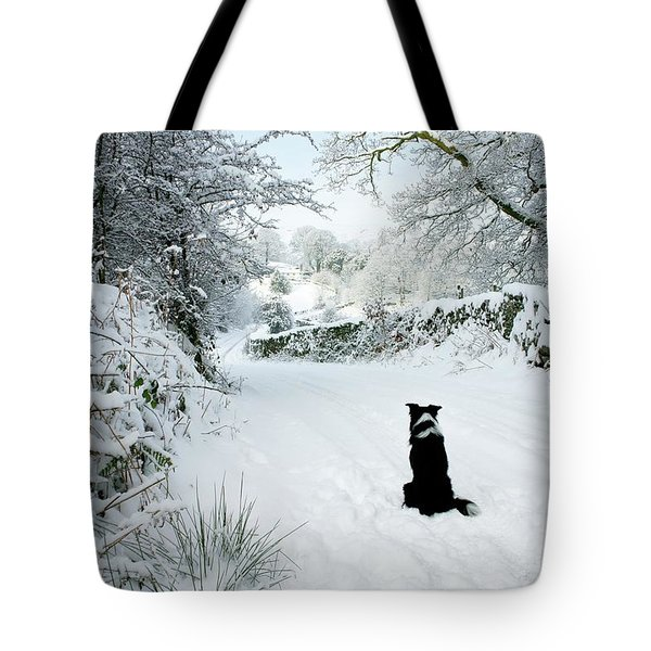 Waiting For The Postman Tote Bag