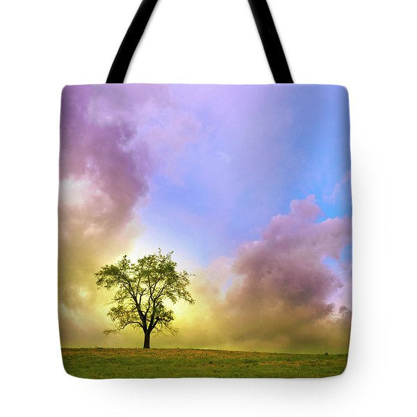 Waiting For The Storm Tote Bag by Rima Biswas