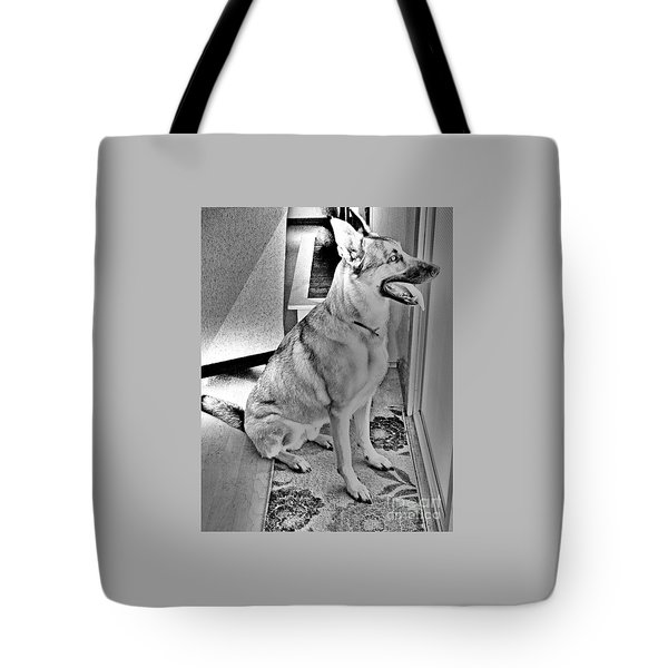 Waiting Friend Tote Bag